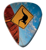 12 X Kangaroo Stop Sign Picks