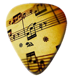 12 X Sheet Music Guitar Picks